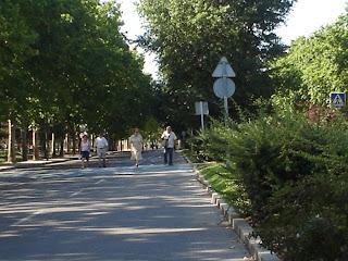 ... Y el carril bici del parque del Paraiso.