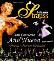 Gran Concierto de Año Nuevo 2010 - 2011
