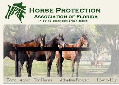 FLORIDA HORSE RESCUE NEEDS HELP | Virginia Thoroughbred