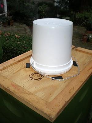 bee, bee package, beekeeping, counting board, debris, feeder, Honey B Healthy, Lula Georgia, P.N. Williams, pail feeder, Small Hive Beetle, varroa,