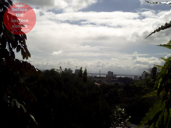 Cebu City as viewed from the Taoist Temple