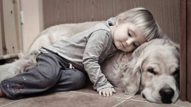 Funny Photos of Kids and Animals