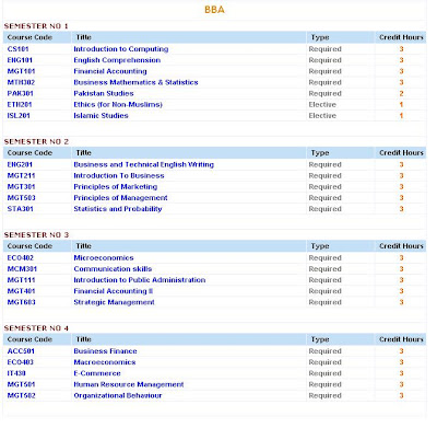 What are the subjects under BBA course?