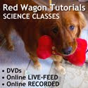 Red Wagon Tutorials - Science Classes