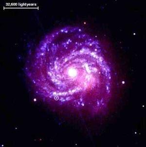 [Image: supernova_3.jpg]
