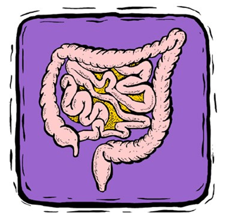 The Crap That Is Colon Cleansing