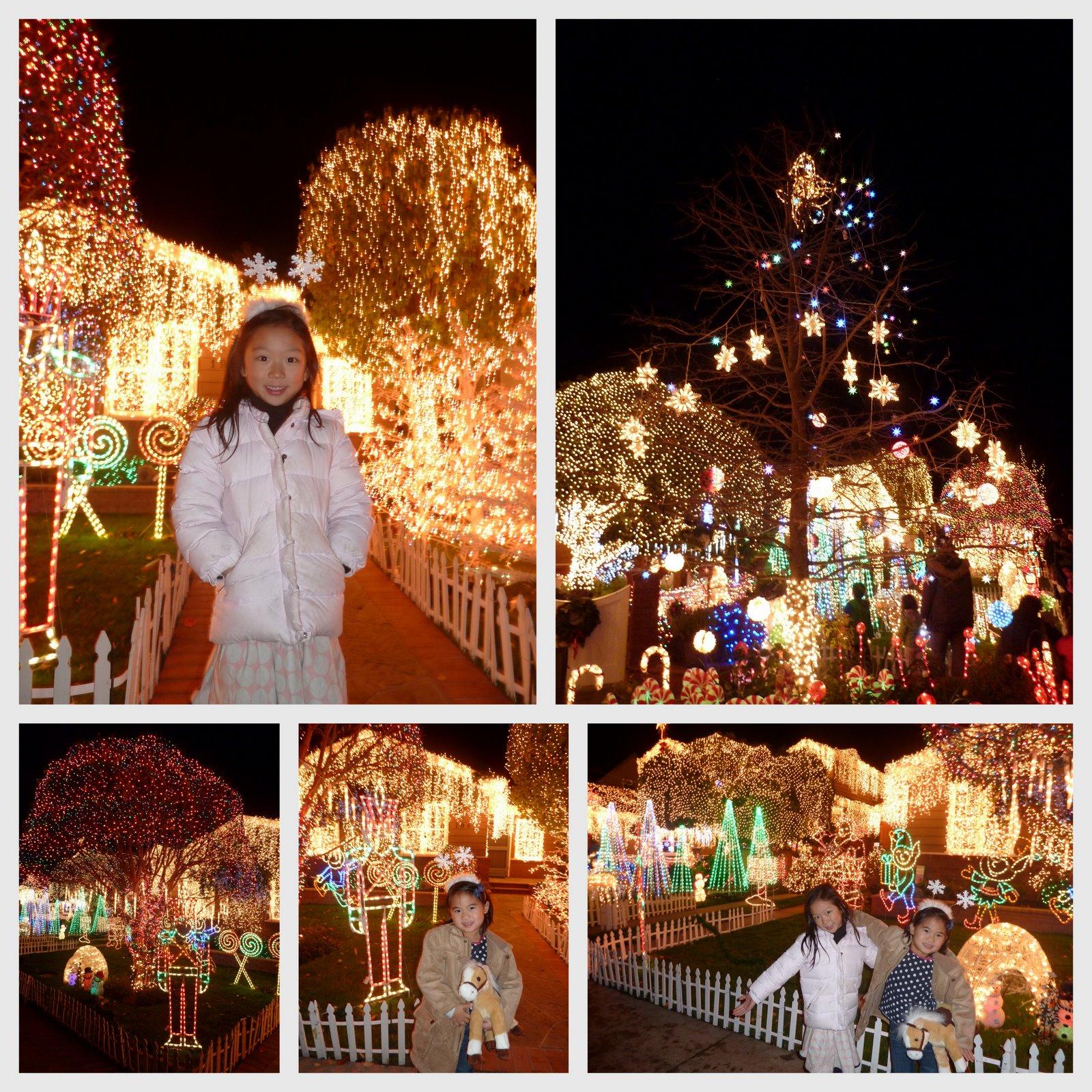 Ella S Daytrips Christmas Lights Eucalyptus Ave San Carlos