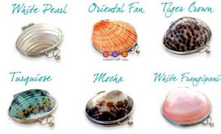 100% Natural lipbalms packaged in Real Beach Shells