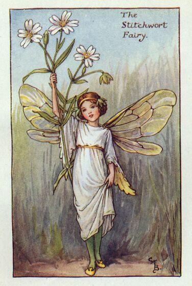Princesa Nadie Las Hadas De Las Flores De Cicely Mary Barker