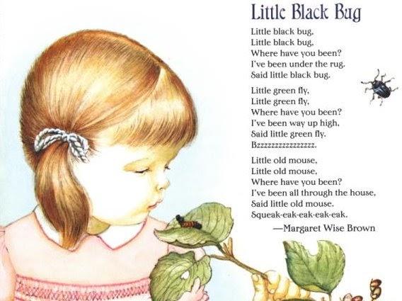 Karen S Poetry Spot Little Black Bug By Margaret Wise Brown