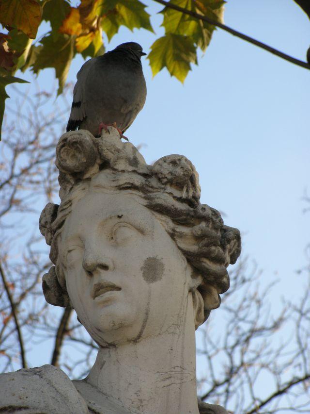 rencontre jardin des tuileries