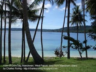 Pulau Mansinam