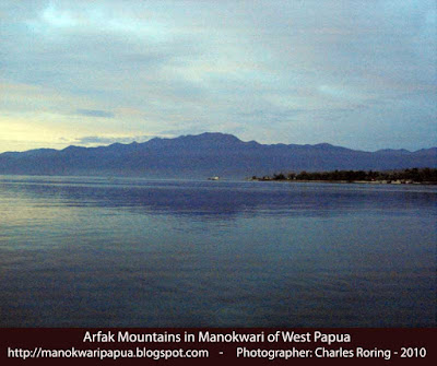 Arfak mountains in Manokwari