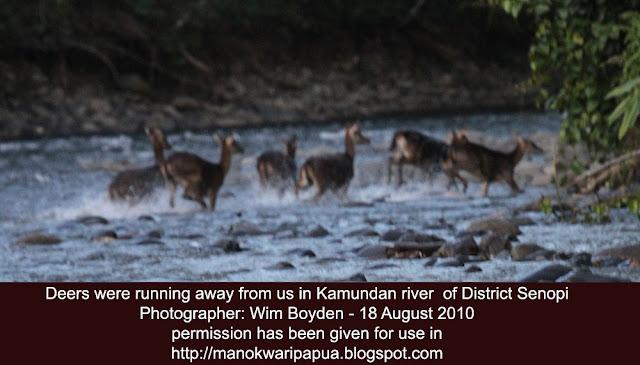 Wisata alam di Tambrauw