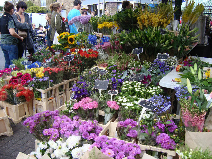 Where can you get LBR product in Minnesota? Over 1, florists carry our products in the upper midwest. Below, listed alphabetically by city, are florist who carry our product on a regular basis, throughout Minnesota.