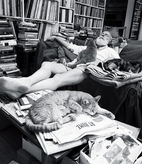 Edward Gorey napping on couch (davenport?) with cats