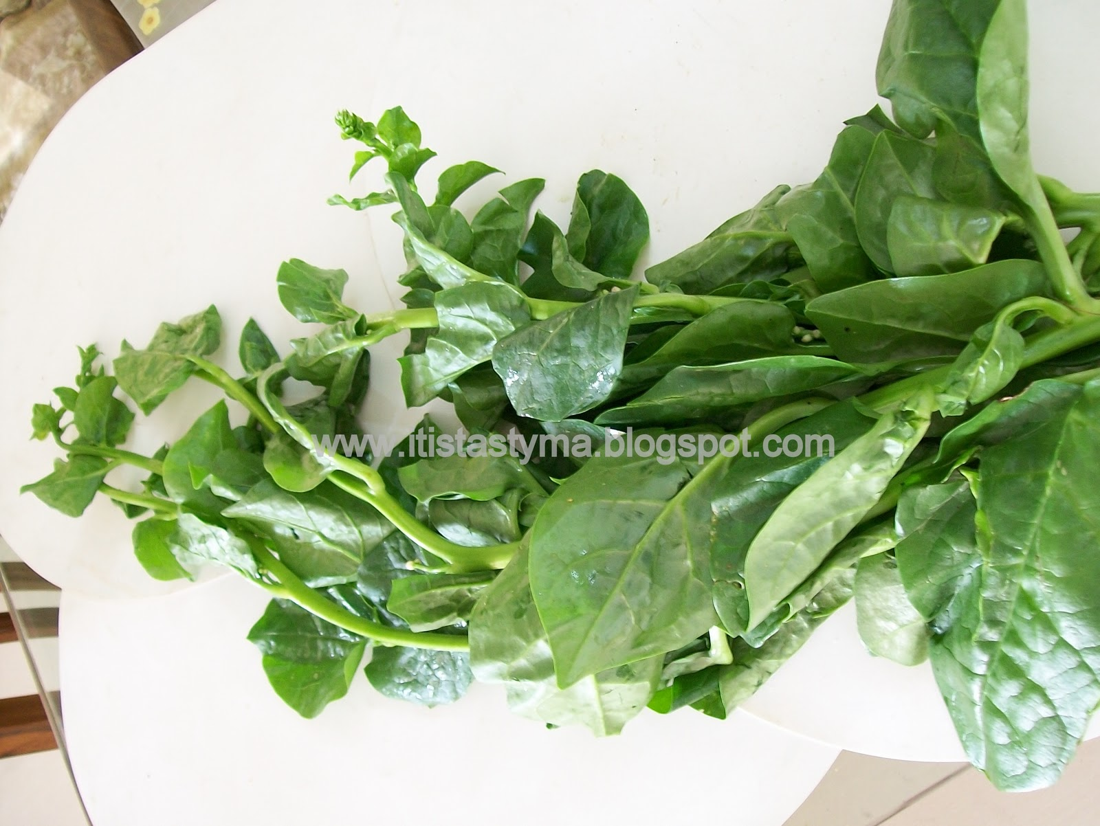 rubisco in spinach leaves Rubisco the enzyme ribulose  et al's summary includes the assessment that rubisco makes up 20-25% of the soluble protein in leaves and is made on the earth at.