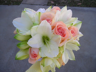 Amaryllis Inspiration For Winter Early Spring Weddings Sisters