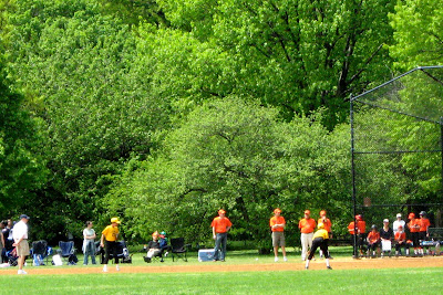 Little League Game in Central Park