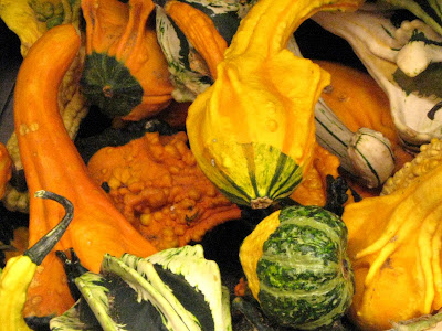 Halloween Fall Harvest Decorative Gourds