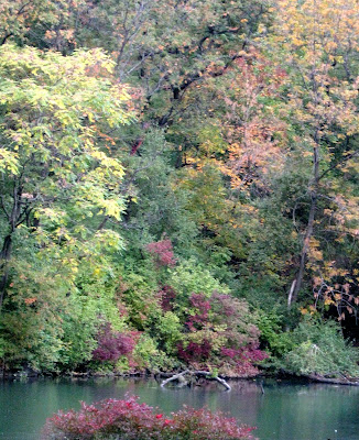 Early Fall Colors in Central Park New York City The Pond