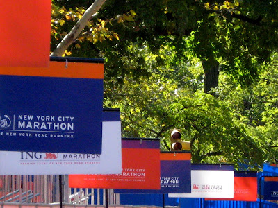 New York City Marathon Preview