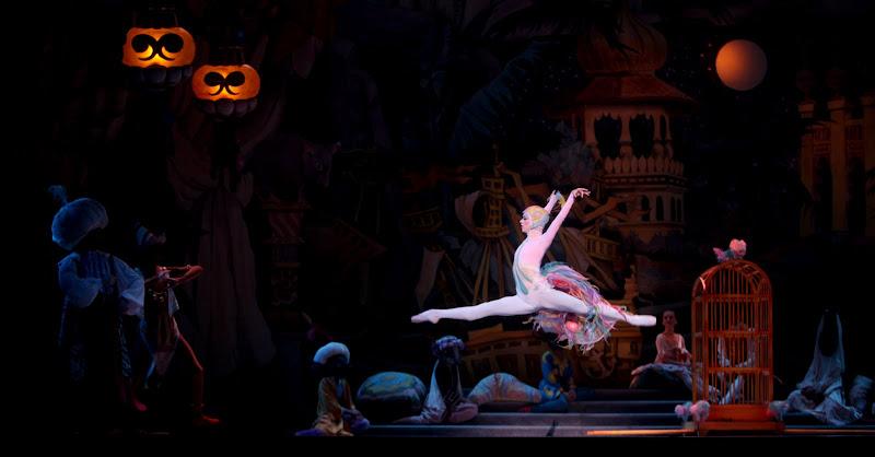 Erika Schultz S Photography Blog Nutcracker Ballet
