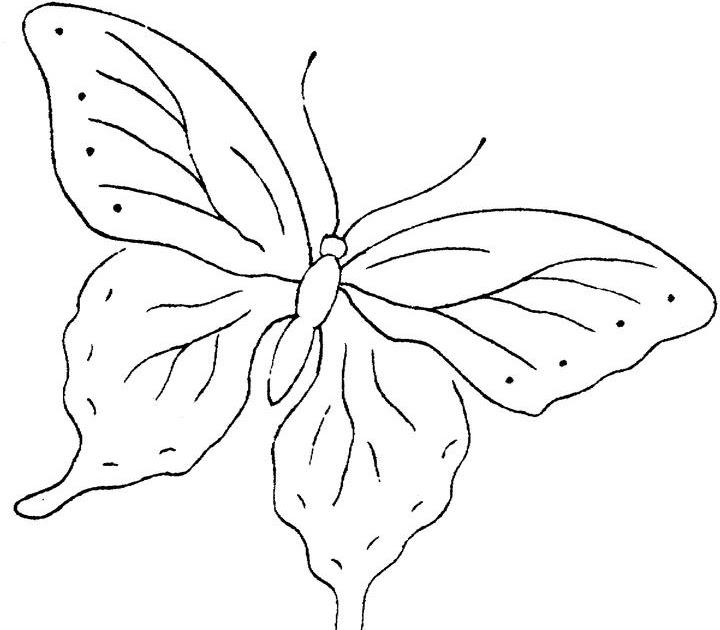 Imagenes De Mariposas Para Imprimir Y Pintar