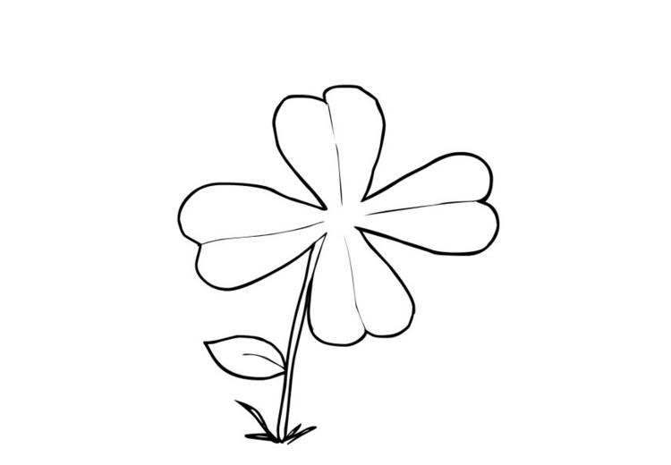 Mi Coleccion De Dibujos Flor De Cuatro Petalos