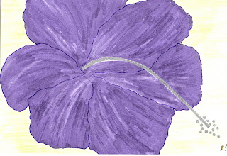 purple hibiscus essays purple hibiscus essay the animal league