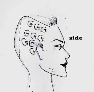 Hair Curl Diagram, Hair, Free Engine Image For User Manual