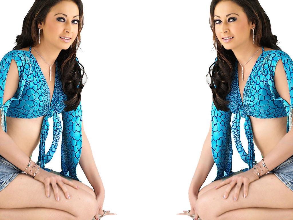 Preeti Jhangiani Hot Bikini Pics Navel Images Saree Photos