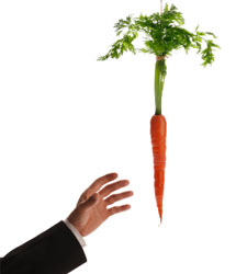 Resultado de imagen de subvención zanahoria