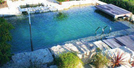 Na d vida experimenta piscinas biol gicas gua for Piscinas biologicas
