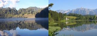 Ranu Kumbolo dengan hutan pinus Eropa