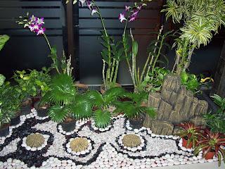 sewa tanaman hias / rental tanaman hias: dekorasi taman indoor