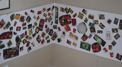 seed catalog collage