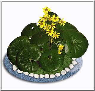 6116c77605e71 Algo de Plantas  Boina de vasco