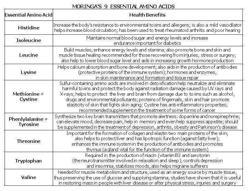 Moringa the super food for athletes vitamins minerals and amino acids in also rh moringa athletesspot