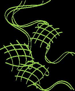 Vectorise Logo | New Vectors