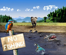 no fishing no paranza