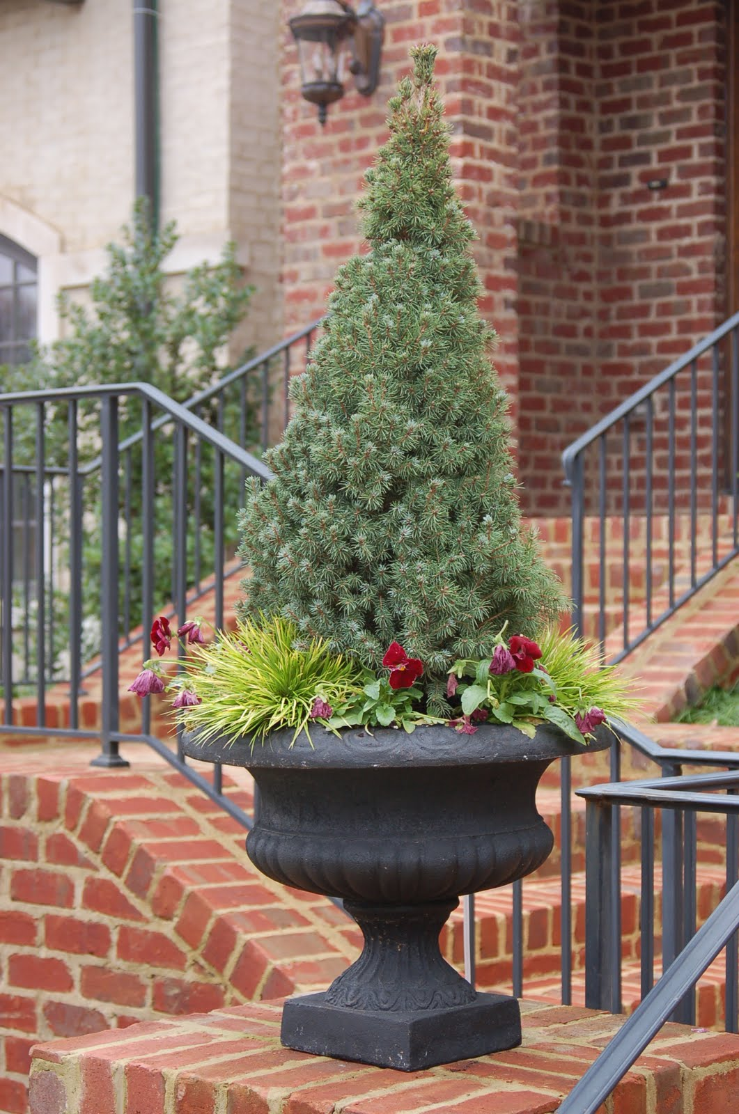 Day 58 - Christmas Tree Containers