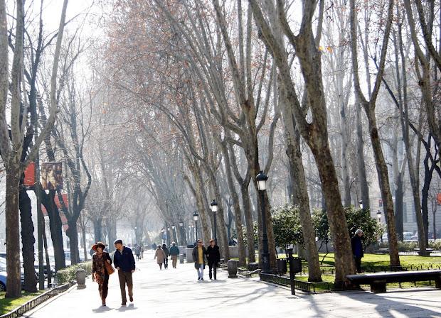 Madrid Paseo Del Prado