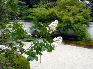 Uraku-en Garden, Inuyama