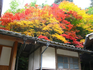 Autumn in Shimane.