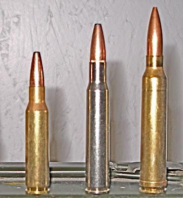 Montana Elk Hunting:  308, 7mm-08,  243