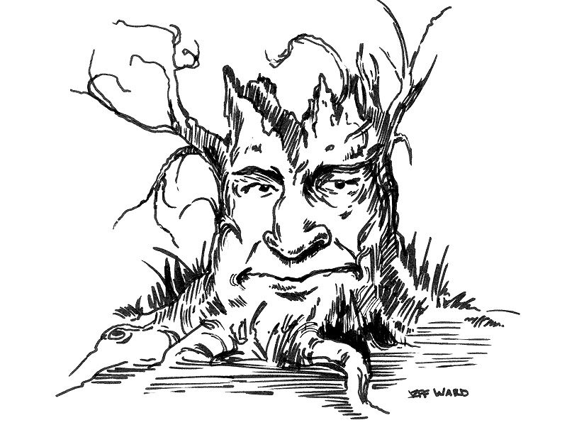 Stungeon Studios Tree Face Pen And Ink Drawing As a result you can download your cartoon picture as svg (vector) or as png file which is converted from vector graphic parts and also upload to gravatar. stungeon studios blogger