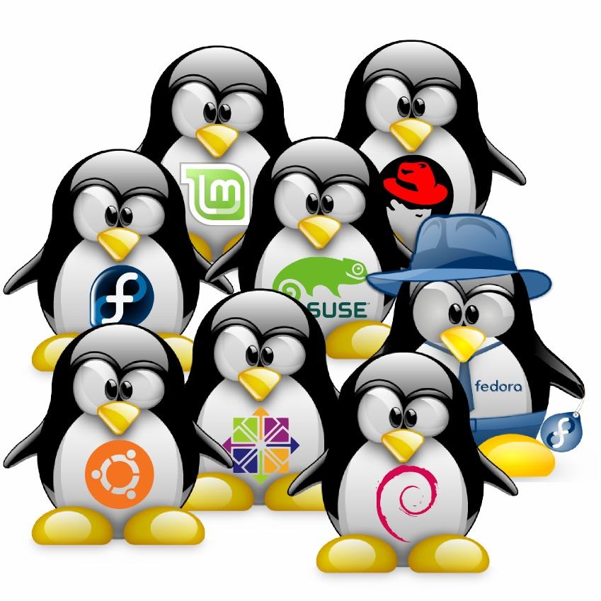 Tux%252520Linux%252520Distros LinuxBird il Twit Magazine sul mondo del pinguino