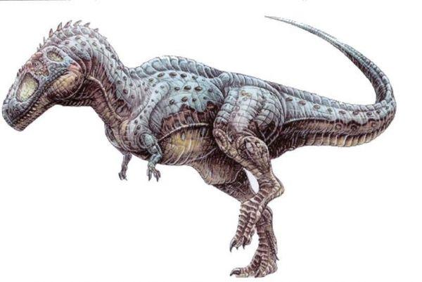 Resultado de imagen para Tyrannotitan chubutensis