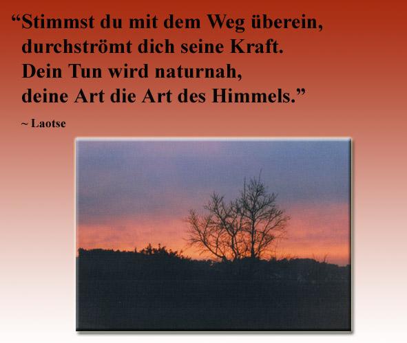Laotse Zitate www.emeditation.de | Zitate Freundschaftssprüche ...